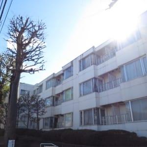 パイロットハウス北新宿 新宿区北新宿3丁目 仲介手数料0円(無料)