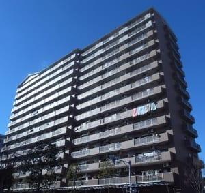 ティ-ズガーデン 江戸川区小松川3丁目 仲介手数料0円(無料)