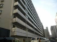 総戸数290戸のビッグコミュニティ 安心のアフターサービス保証付き 内装リフォーム済 4路線3駅利用可能 月島駅まで徒歩3分以内の好立地 (外観)