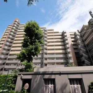 新規内装リフォーム済み 総戸数158戸のビッグコミュニティ(外観)