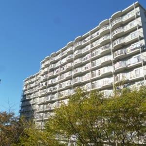 総戸数577戸のビッグコミュニティ 両面バルコニー角部屋住戸から生まれる開放感 2路線利用可能(外観)