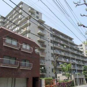 12階建て10階部分で日当り・眺望良好!5路線3駅利用可能!ペットと一緒に暮らせます!家具付き!新規リノベーションマンション!(外観)