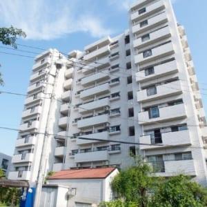 10階建ての9階部分で眺望・陽当り・風通し良好 新規内装リフォーム物件 住宅ローン減税適合物件(外観)