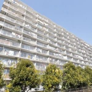 11階建て8階部分の西向き 陽当り・通風良好 ペットと一緒に暮らせます 新規内装リフォーム済み(外観)