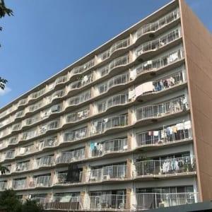9階建て最上階にて陽当り・眺望良好 新規内装リノベーション済み(外観)
