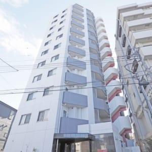 9階部分の南東向きにつき陽当り・眺望良好 大切なペットと一緒に暮らせます 宅配ボックス・オートロック完備 (外観)